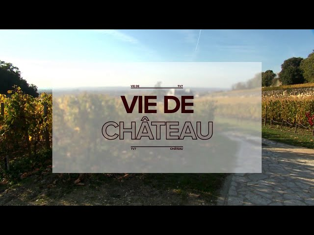 Vie de Château - Château Michel Montaigne