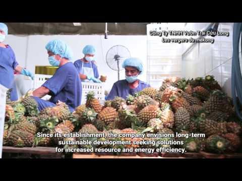 UNIDO Eco-Industrial Park Project in Vietnam