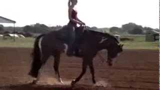 Paige Stawicki video for college equestrian team