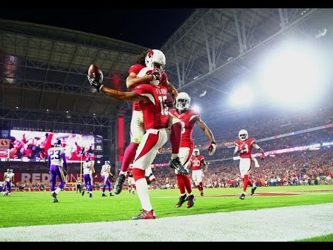 Arizona Cardinals || 2016-17 Season Highlights || Bad Birds ||