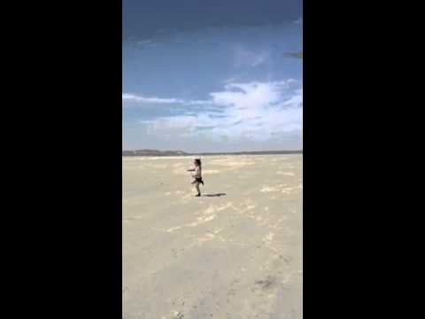 Ashley Purdy Desert Randomness