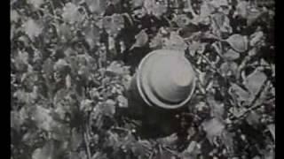 Panzerfaust Anti-Tank Weapon