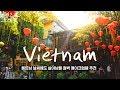 베트남 여행 간다면 꼭 봐야 할 영상 [렛츠고트래블] EP.2