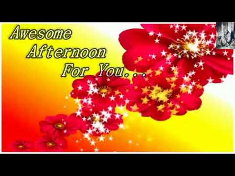 Beautiful Good Afternoon Wishes Greetings Whatsaap Video Message