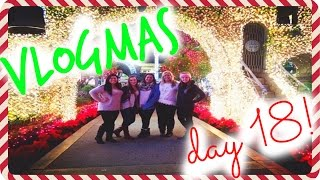 ANOTHER CAR ACCIDENT!?! Festival of Lights, & Home Sweet Home! VLOGMAS 18!