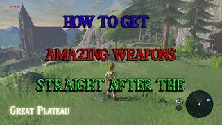 How To Get Amazing Weapons Straight Off The Great Plateau- Breath Of The Wild