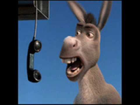 Pick up the Phone Donkey