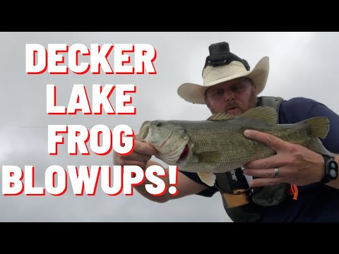 Fishing Decker Lake Austin Texas! Big Blowups On The Spro King Daddy!