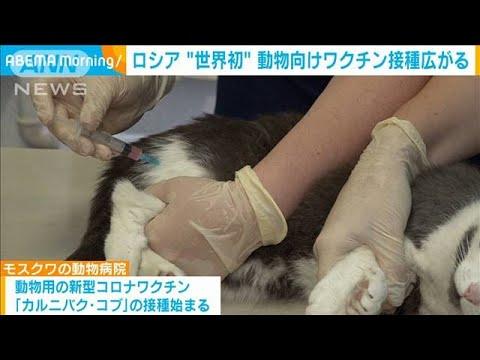 ロシア「世界初」動物用ワクチン接種の動き広がる「製薬会社は儲かるだろうなぁ動物にも打たせちゃうなんて」!