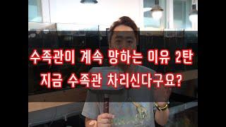 수족관이 계속 망하는이유 2탄