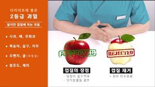 다이어트할 때 과일 먹을까? 말까? (다이어트 과일 총…
