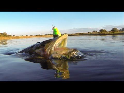 Hunting for a monster pike. Fishing wt lures & soft-baits. Рыбалка в Ирландии: охота на щуку монстра