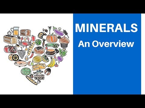 Important minerals you need and the foods that contain them