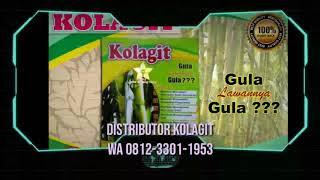 Gambar cover 081233011953 Kolagit Obat Diabetes kolagit asli harga kolagit Gita Adinda Nasution Medan