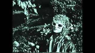 Michel Polnareff - Une Simple Mélodie - 1978 - Vidéo Clip Montage