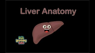 The Human Body for Kids/Learn about the Human Body for Children/Liver
