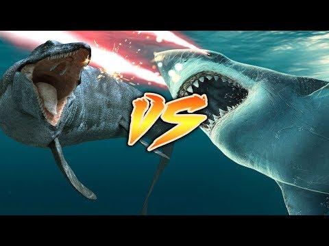 Mosasaurus VS Megalodon [Who Would Win?]