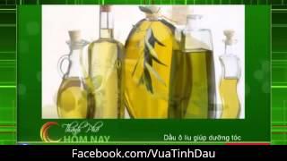 Hướng dẫn làm đẹp với dầu ô liu (olive) - Vua Tinh Dầu