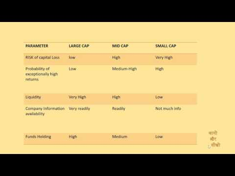 [Hindi]Earn money in Stock - What is Large cap Mid cap and small cap