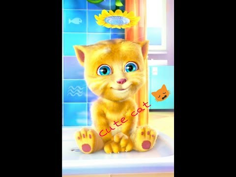 Talking Ginger Cute Cat | Funny Cartoons Video for kids 2017