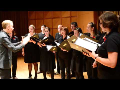 "Cantus Vocum Promo ""For the Fallen"" Concert on 11th November 2015"