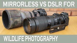 Mirrorless vs DSLR for wildlif…