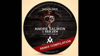 Andre Salmon, Seb Zen - I Just Can't Take (Jose M. & TacoMan Remix)