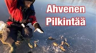 Ahventa Raippaluodosta - Ahvenen pilkintää JASU Kevyttasurilla - Kevennetty tasapainopilkki - Ahven
