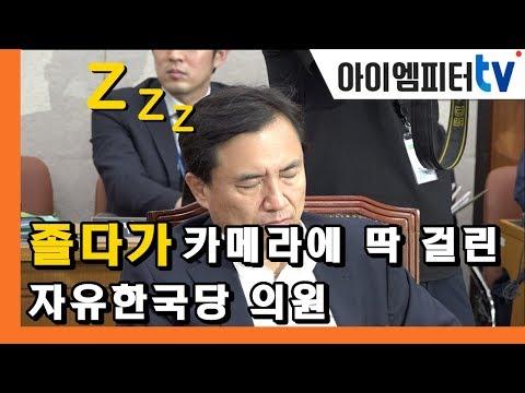'윤석열' 인사청문회장서 '단잠'에 빠진 김진태 의원