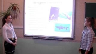 Біологія 8 клас