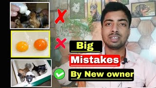 7 big mistakes by new dog owner.