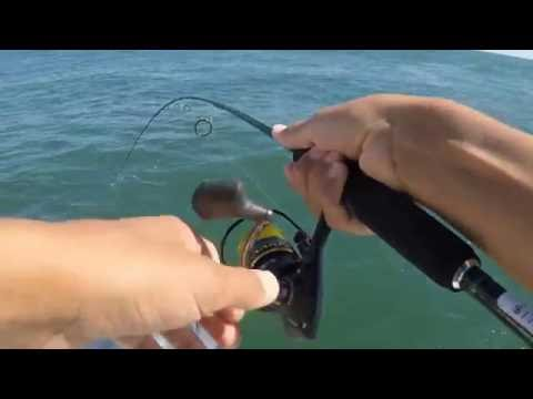 Scup (Porgy) Fishing + Monster Fish Hooked!!