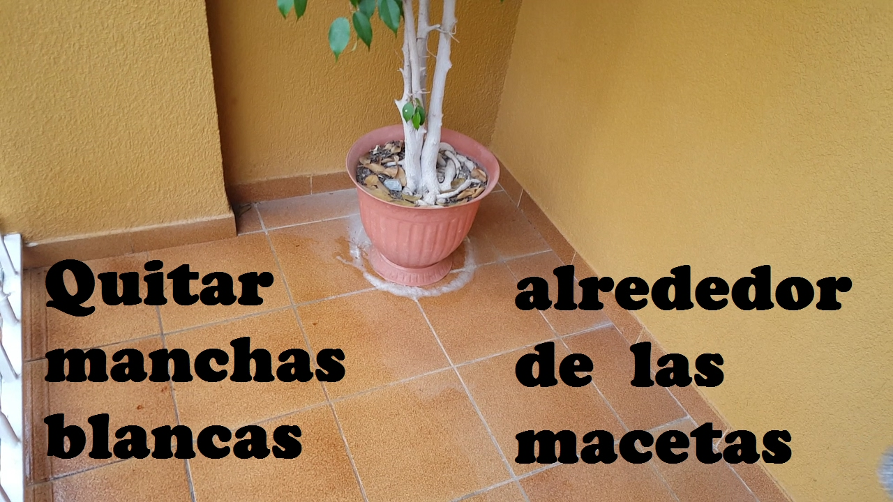 Quitar manchas del suelo remove stains from the floor - Como quitar manchas del piso ...