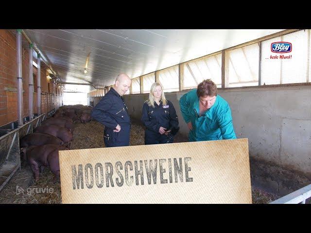 Zu Besuch bei unseren Moorschweinen