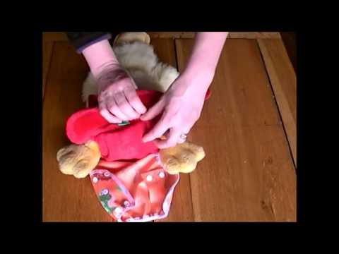 How To Put On A TotsBots Bamboozle Stretch Reusable Nappy Demo
