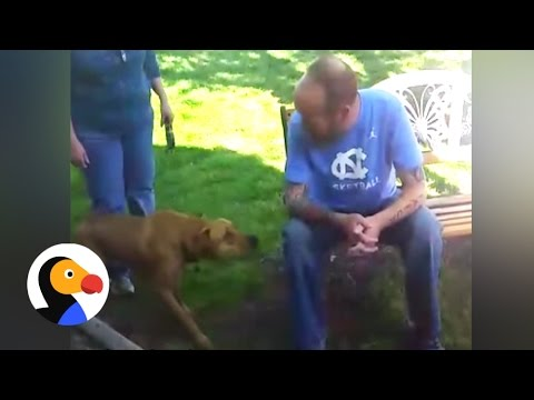 Dog Doesn't Recognize Owner After Weight Loss...Until He Sniffs | The Dodo