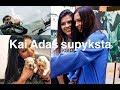 Vlog #77: Kai Adas supyksta