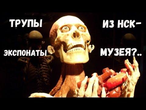 Топ 15 новосибирских преступлений, достойных экранизации [Top NSK #10]