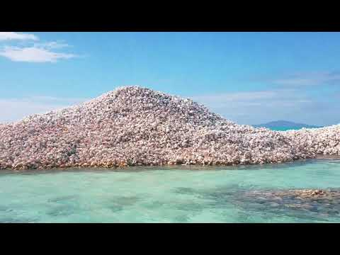 Conch Island – A Man-Made Island Built Out of Millions of Conch Shells
