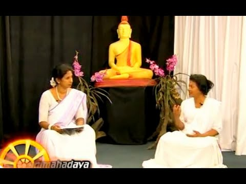 Dhamma Discussion 2 Your Questions  on Meditation