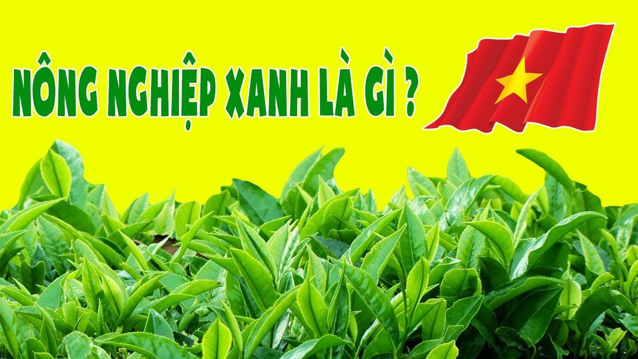 Cách Mạng Nông Nghiệp Xanh Là Gì – Nông Nghiệp Xanh Tại Việt Nam đang ở đâu