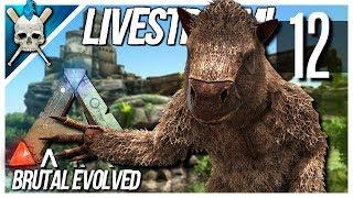 ARK: Brutal Evolved LIVE - Journey To The Castle Swamp & Small Breeding Pen [S1-E12]