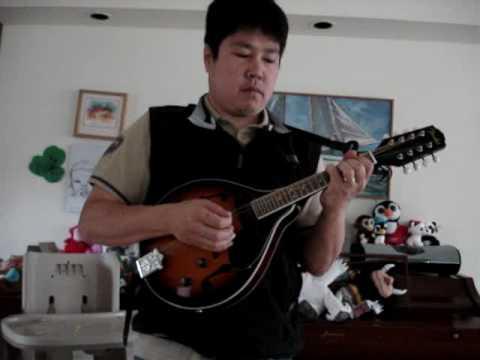 Wedding Song On Mandolin