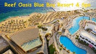 2017 Misr Rif Voha Ko'k Bay Resort & Spa 5* Sharm El Shayx