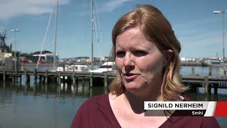 Stigande havsnivåer oroar i Skåne - Nyheterna (TV4)