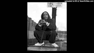 Download 2pac Feat 50 Cent - Realest Killaz (DEMO VERSION) MP3 song and Music Video