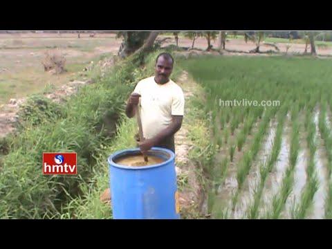 Nellore District Farmers Use Organic Cultivation | Nela Talli | HMTV