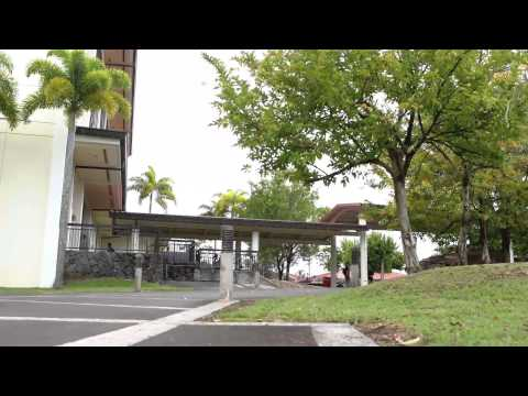 University of Hawaii at Hilo Study Abroad