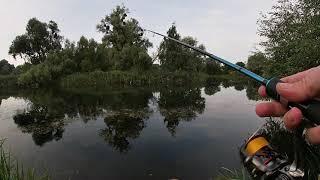 Ловля окуня в траве Пробная рыбалка на воблера спинингом Hanter Микруха помогла уйти от нуля