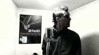 Blue Stahli - The Fall [Bullet of Reason VOX COVER]